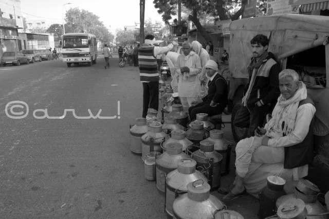 jaipur-milk-sellers-in-milk-market-doodh-mandi-jaipurthrumylens