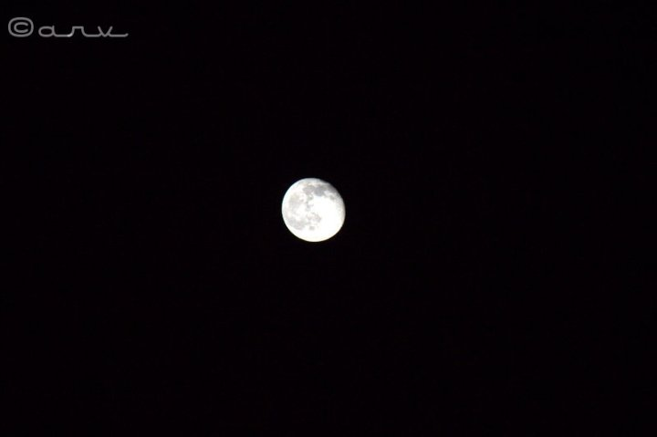 friday-skywatch-moon-jaipur
