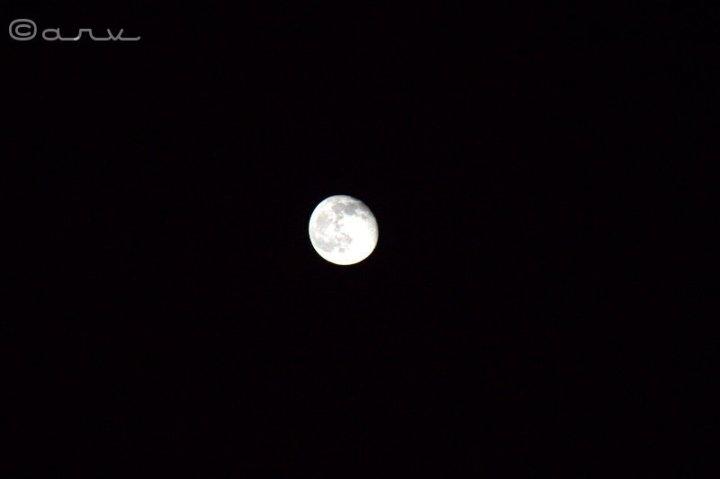 friday-skywatch-moon-jaipur