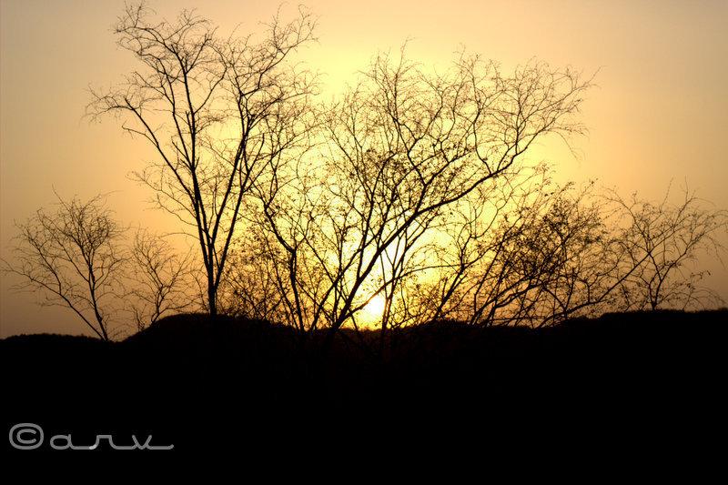 nahargarh hills