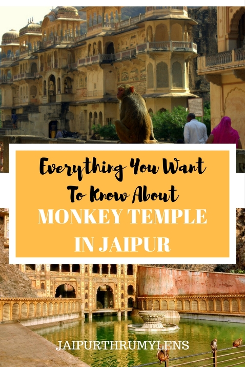 Everything You WantTo Know About Monkey temple Jaipur - Galtaji #jaipur #monkeytemple #monkey #temple #hinduism #heritage #beautiful #rajasthan #incredibleindia #krishna