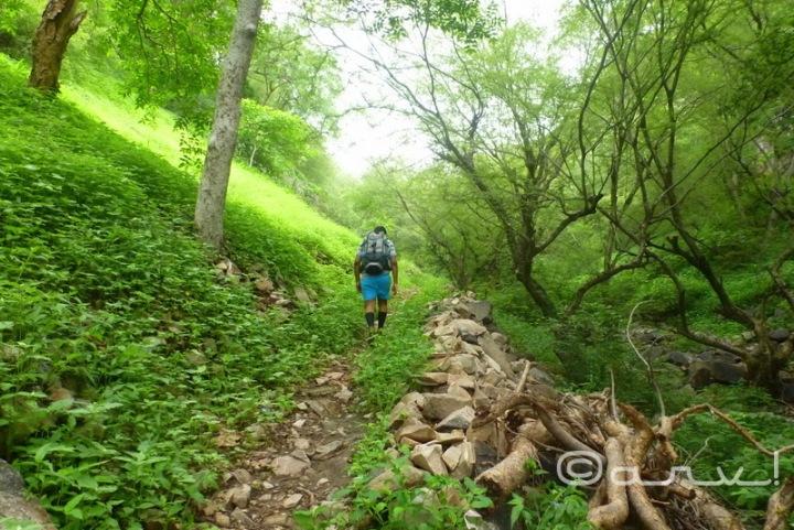 jaipur hikers