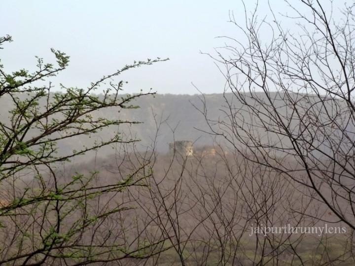 jhalana-forest-jaipur