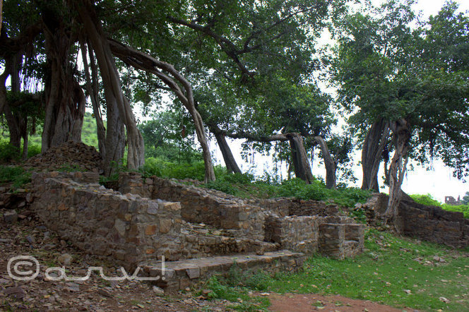 travel-to-bhangarh