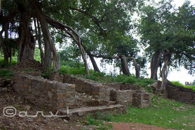 travel-to-bhangarh