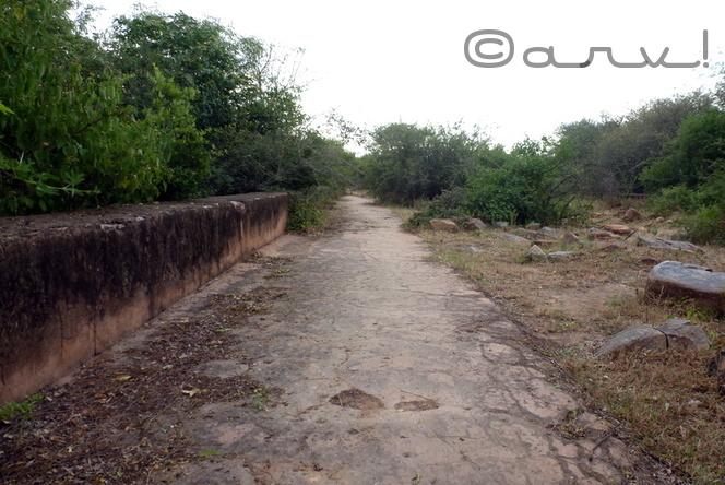 jaipur-heritage-water-walk-nahargarh