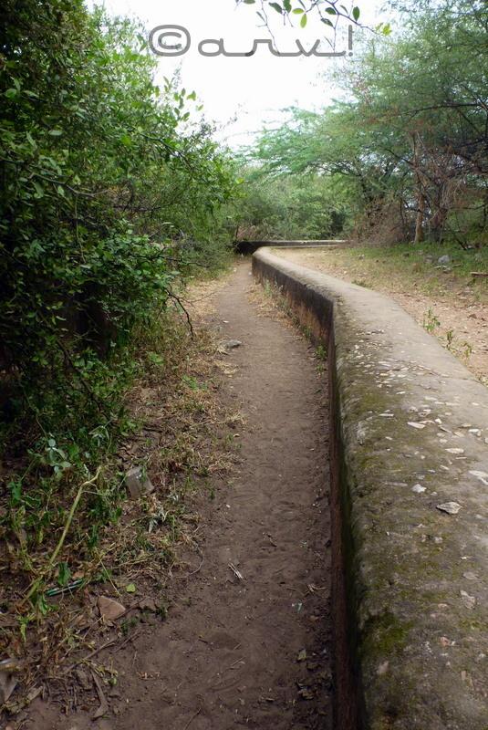 water-walk-jaipur-by-neeraj-doshi-nahargarh-fort-jaipur
