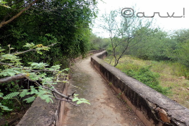 water-walk-jaipur-nahargarh-fort