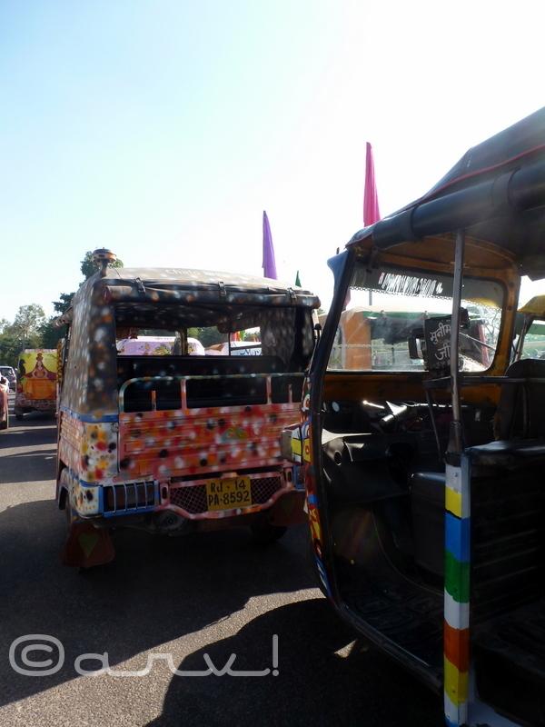 jaipur-cartist-resurgent-rajasthanjaipur-cartist-resurgent-rajasthan