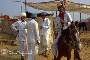 villagers-in-pushkar-fair-at-pushkar-rajasthan-india
