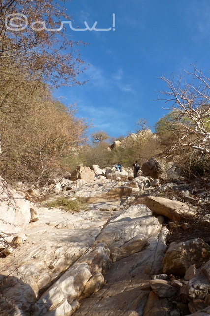 hiking-jaipur-kadamba-difficult-section