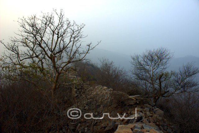 fog-on-hill-hiking-in-jaipur-jaipurtrekkers-jaipurthrumylens