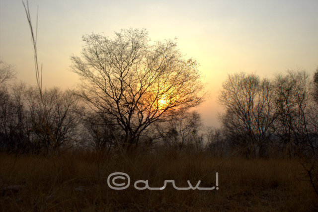 hiking-trekking-in-jaipur-hills-winters-friday-skywatch-jaipurthrumylens