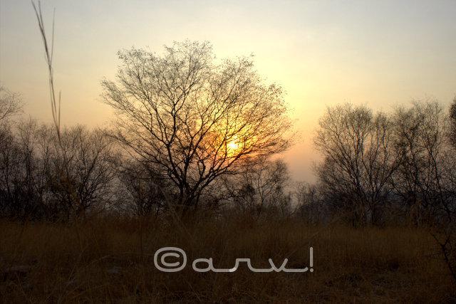 hiking-trekking-in-jaipur-hills-winters-friday-skywatch-jaipurthrumylens