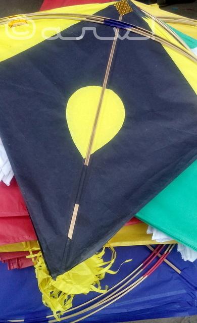 kite-in-jaipur-steets-makar-sakranti-festival