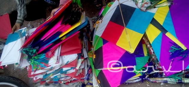 kites-in-streets-jaipur-makar-sakranti