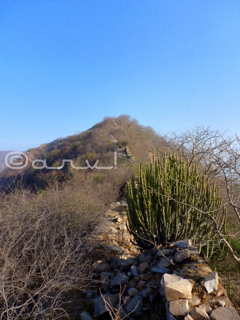 weekly-photo-challenge-seasons-aravali-hills-in-jaipur-jaipurthrumylens