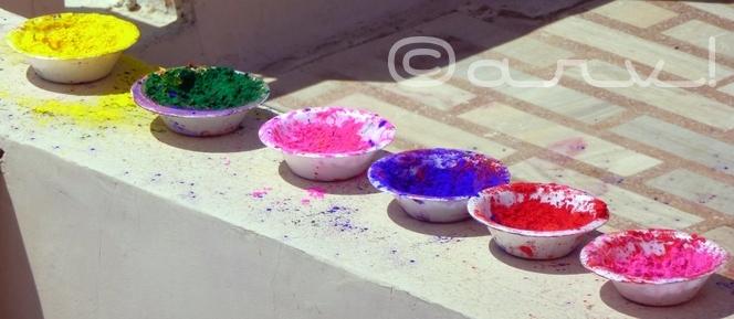 festival-of-colours-holi-in-jaipur-celebrations-blog-on-jaipur-jaipurthrumylens