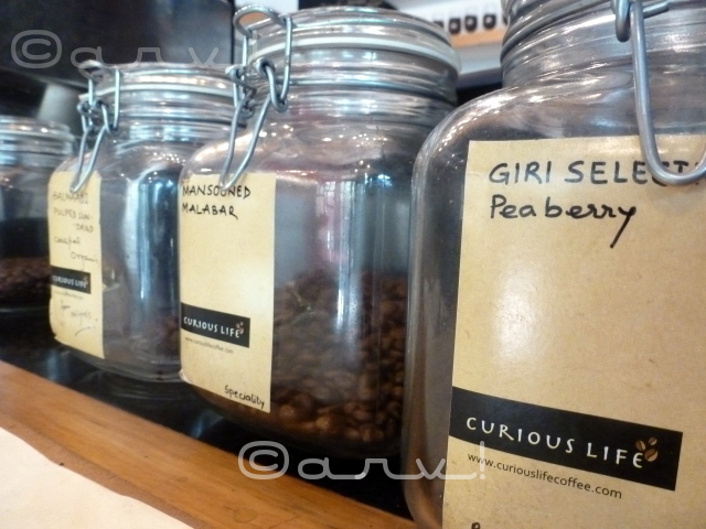curious-life-coffee-jaipur-review-by-jaipurthrumylens