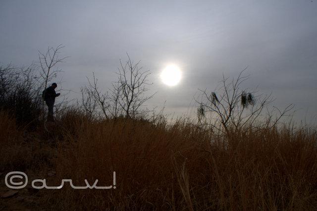 nahargarh-biological-park-jaipur-aravali-hills-skywatch-friday-connect-disconnect