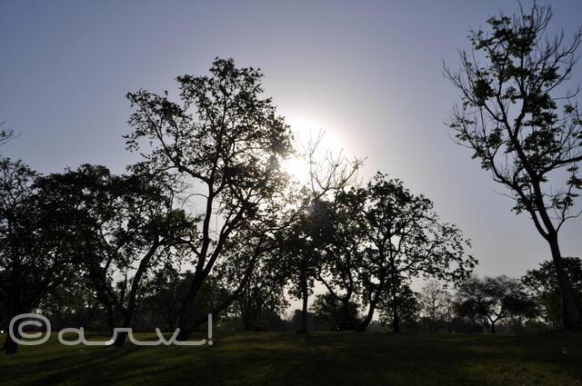 silhoutte-sunrise-central-park-jaipur-summer-sun-jaipurthrumylens
