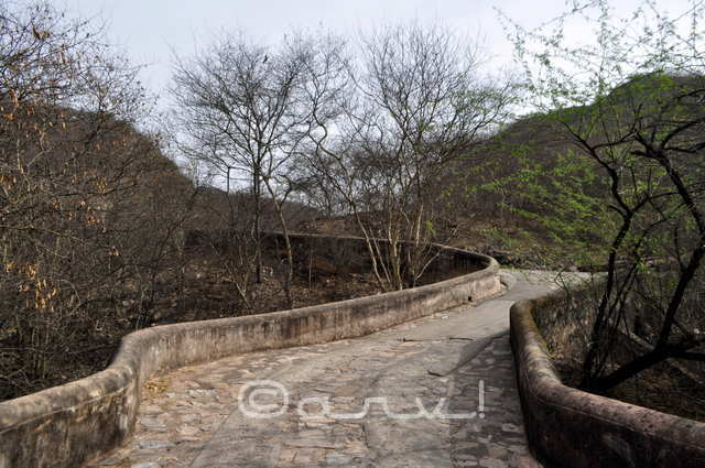 way-to-naila-fort-jaipurthrumylens-oberoi-property
