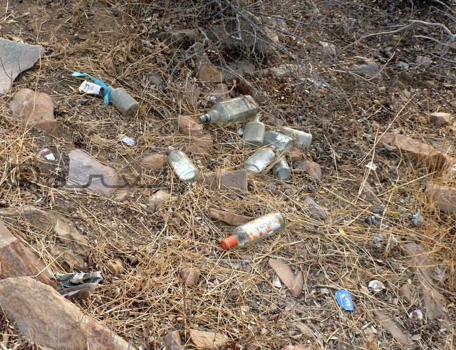 world-environment-day-garbage-on-nahargarh-hill-jaipur