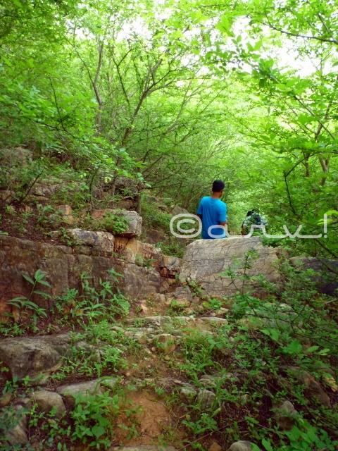 hiking-trekking-in-jaipur-jungles-jaipurthrumylens