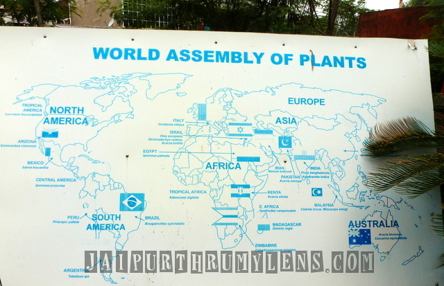 world-assembly-of-plants-world-forestry-arboretum-jaipur