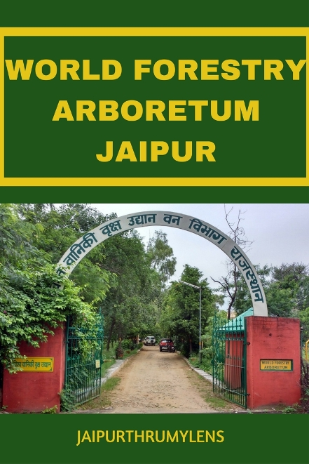 world forestry arboretum jaipur Forest Deaprtment