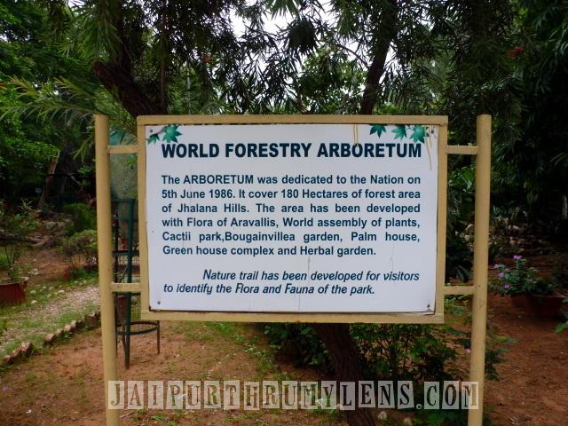 world-forestry-arboretum-jaipur-jhalana-jaipurthrumylens