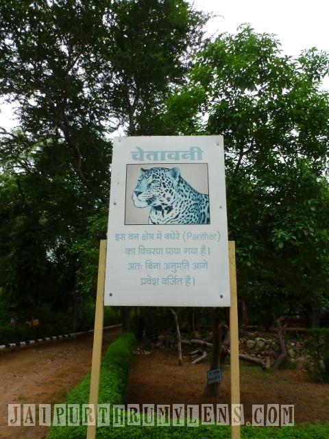 world forestry arboretum jaipur