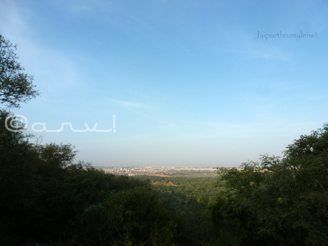 jaipur-city-view-weekly-photo-challenge-edge-jaipurthrumylens-forest-nature