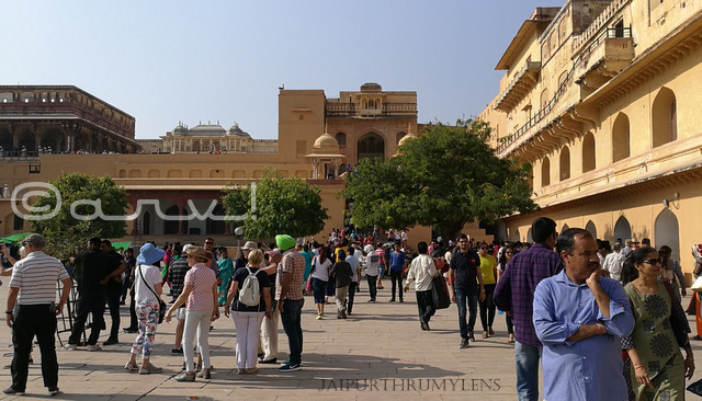 amer-fort-palace-jaipur-picture