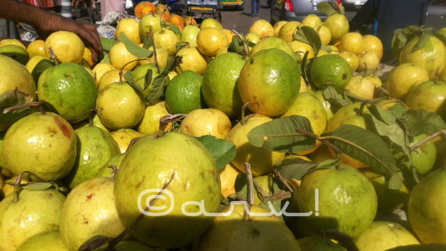 guvava-for-sale-on-hand-cart-in-jaipur-market-johari-bazaar-fruits-rajasthan-india