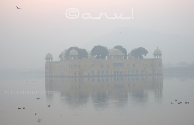 jal-mahal-jaipur-water-palace-mansagar-lake-jaipurthrumylens-skywatch-friday