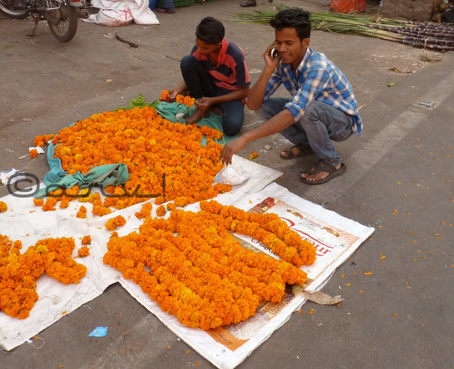 marigold-garland-for-sale-in-johari-bazaar-jaipur-diwali-celebration