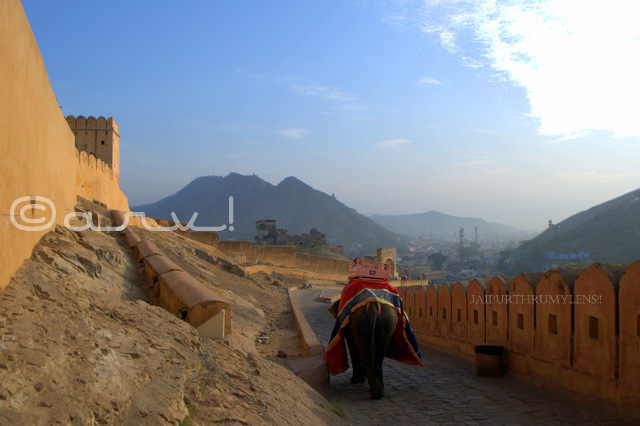 picture-amer-fort-elephant-ride-jaipur-india