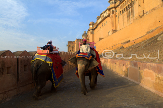 rajput-mughal-architecture-amalgamation-amer-fort-jaipur-jaipurthrumylens
