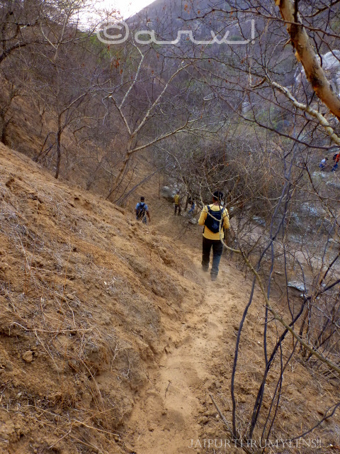 hiking-trekking-jaipur-forests
