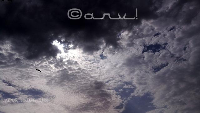 skywatch-friday-monsoon-in-jaipur-overcast-clouds-with-eagle-in-flight-jaipurthrumylens