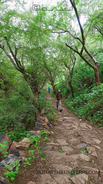 trekking-in-jaipur-aravali-hills-forest-hiking-trails