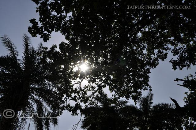 bhangarh-fort-picture-skywatch-friday-jaipurthrumylens-wordles-wednesday