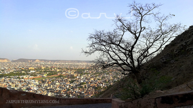 how-to-reach-nahargarh-fort-jaipur