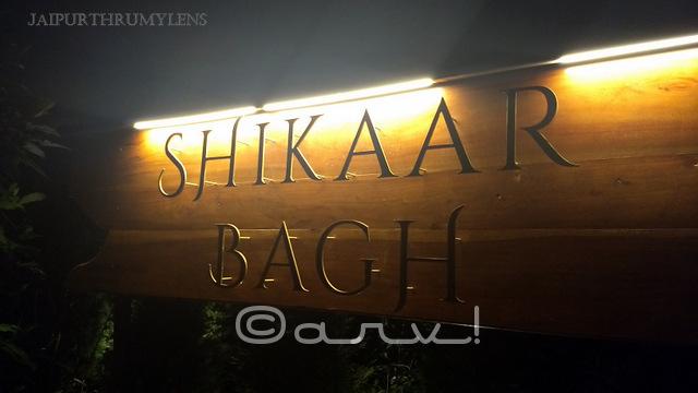 shikaar-bagh-restaurant-bar-narain-niws-hotel-jaipur-picture