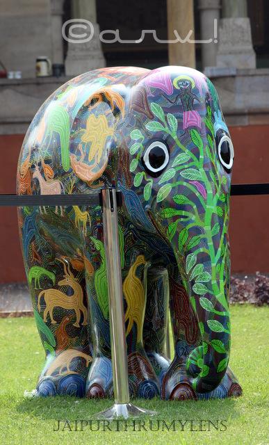 hand-painted-elephant-parade-india-jaipur