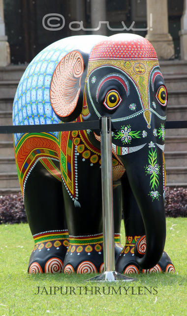 hand-painted-elephant-parade-india-jaipur