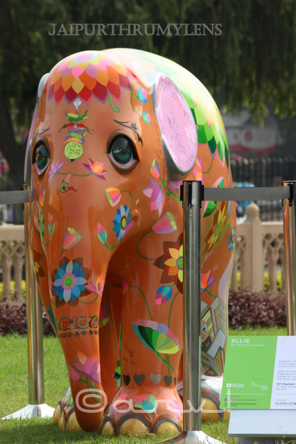 painted-elephant-parade-jaipur-india-dilip-sharma