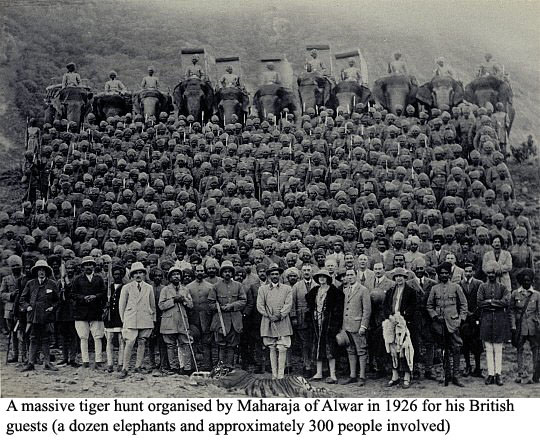 tiger-hunting-british-raj-alwar