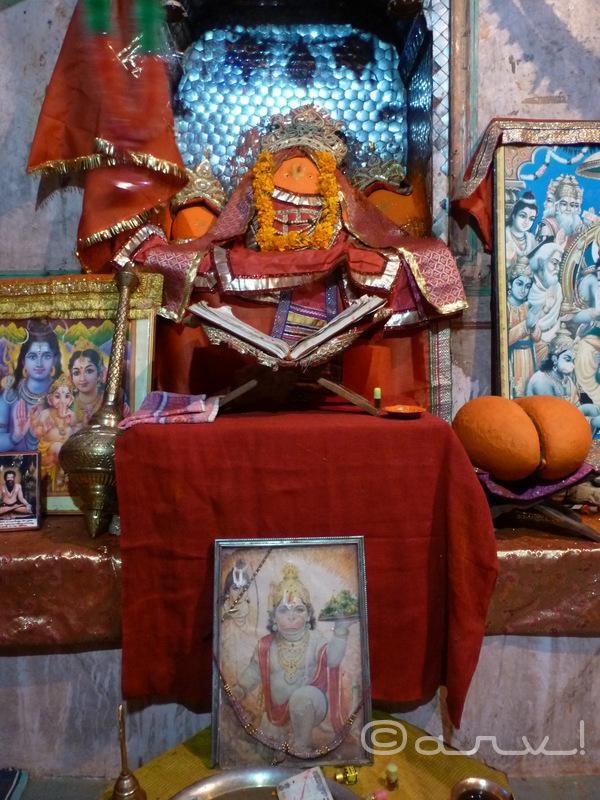 lord-hanuman-monkey-temple-jaipur-galta-ji